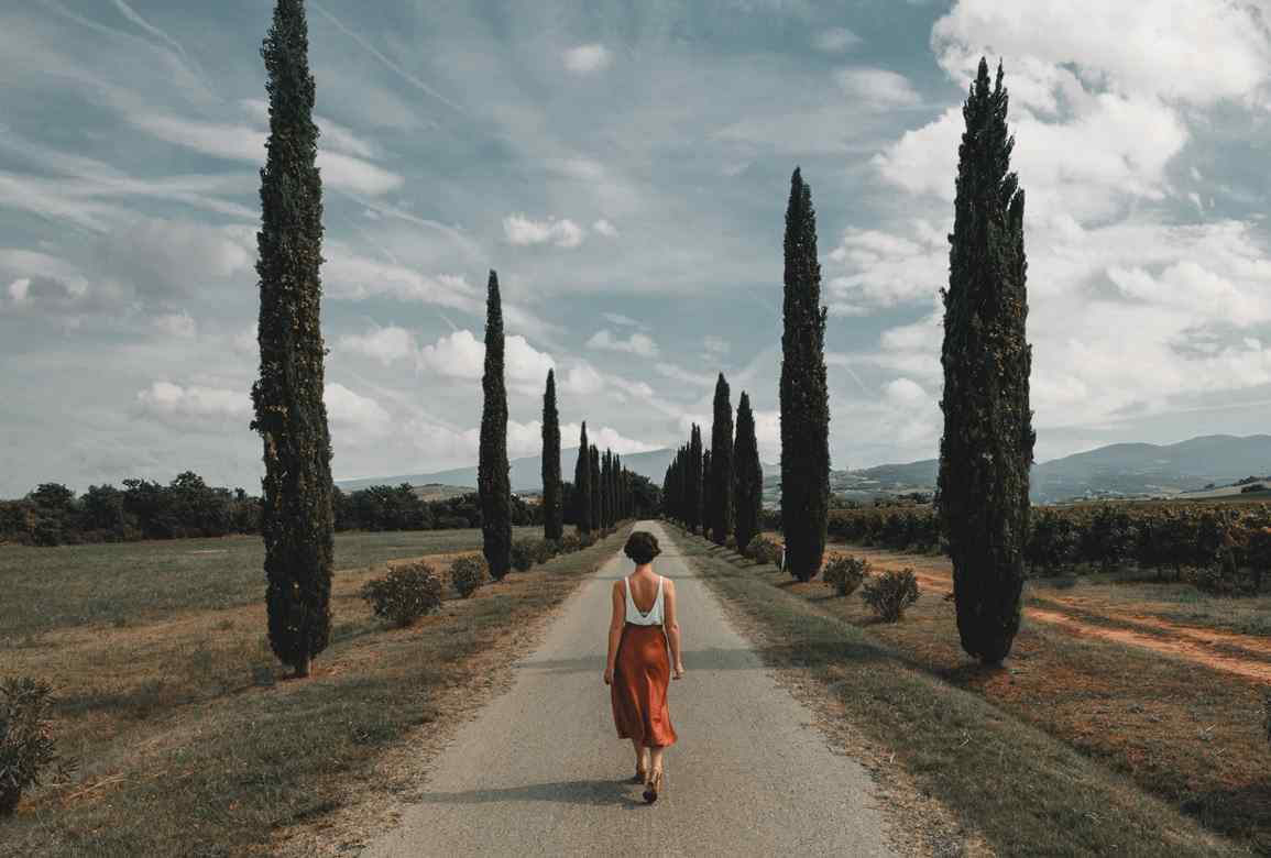Bild på apa