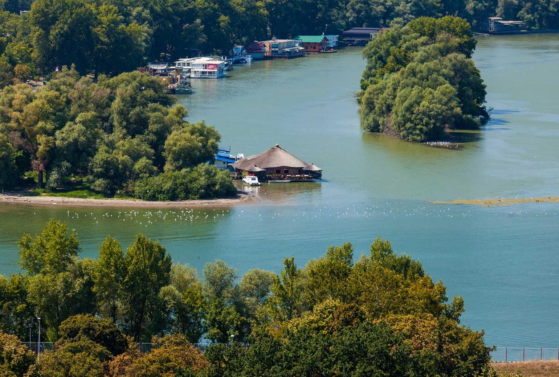 Husbåtar på floden Donau i Belgrad