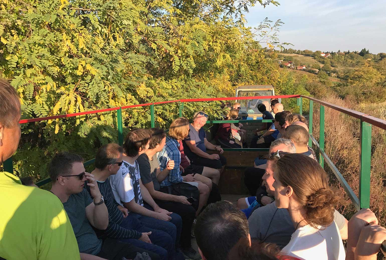 cykling och vinskörd utanför Belgrad