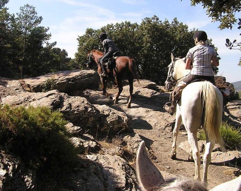 Ridtur på andalusiska fullblod i Granada